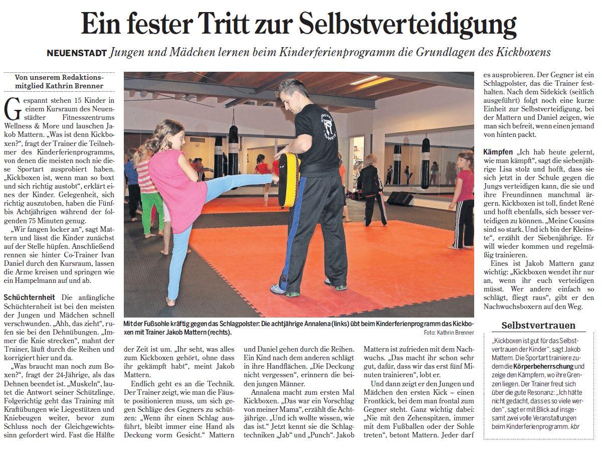 kickboxen-neuenstadt-heilbronner-stimme-zeitung